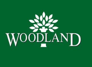 woodland brand analysis
