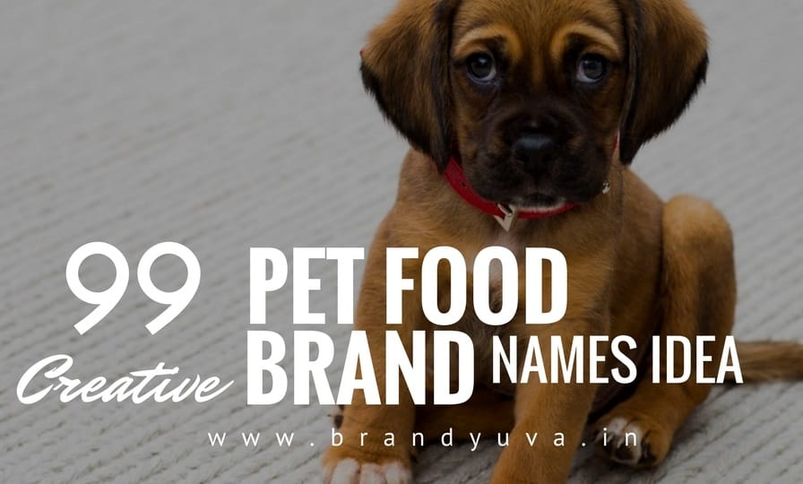 101+ Catchy Pet Food Brand Names Idea - Brandyuva.in