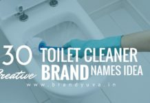 toilet cleaner brand names