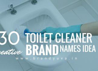 toilet cleaner brand names