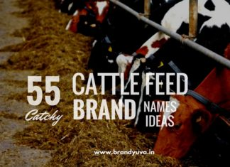 cattle-feed-brand-names