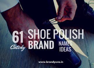 shoe polish brand names