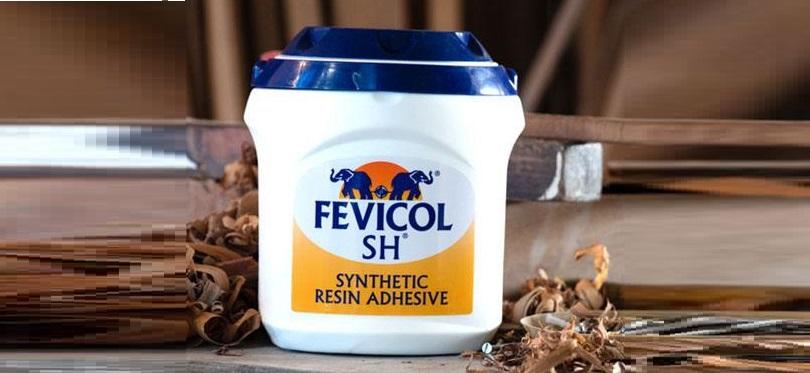 fevicol original name