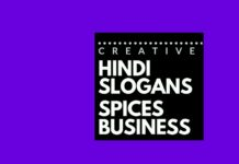 hindi advertising slogans for spices